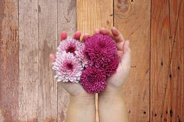 Purple flowers in children hands