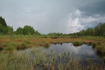 Panaromatic view at Soumarske raseliniste, little lake