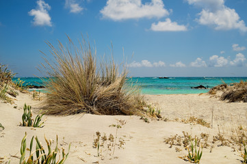 Strand in Elafonissi auf Kreta