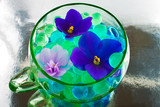 African Violet Flowers in the Hydrogel poster