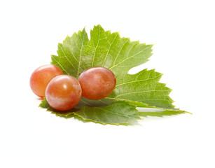 Three Fresh Grapes Berries on the Green Leaf