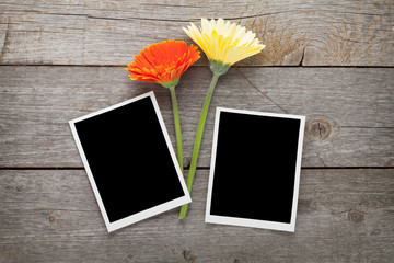 Two colorful gerbera flowers and photo frames