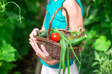Close-up basket of greens in woman's hands