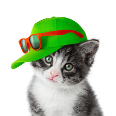 Kitten with green cap on white background