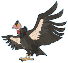 California Condor Vector Clip Art Illustration