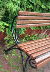 bench,garden