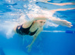 female competition swimmer - 68338468