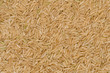 Brown rice background