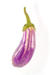Eggplant purple Isolated on white background
