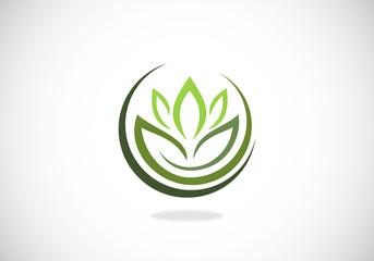lotus-flower-herbal-medicine-spa-vector-logo
