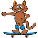Tomcat and skateboard poster
