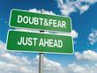 Постер, плакат: doubt fear