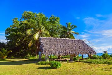 Canopy at tropical beach