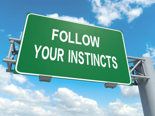 follow you instincts