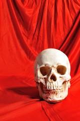 赤い布と骸骨