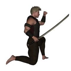 Warrior, Kämpfer