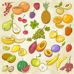 Freehand Multicolored Contours of Fruits