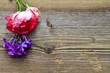 canvas print picture - Holz Hintergrund Rose