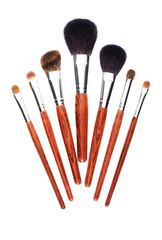 Seven makeup brushes on white background