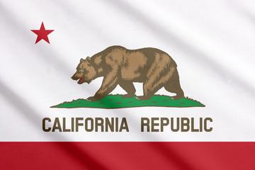 Waving flag of California