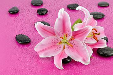 Lilie z kamieniami bazaltowymi