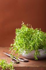 fresh thyme herb in metal bowl