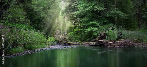 canvas print picture Flusslandschaft