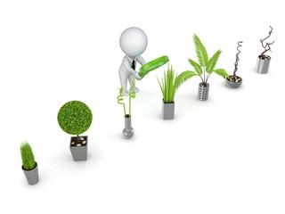 3d rendered decorative plants