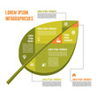 Green Leaf - Vector Infographic Concept