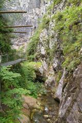 View along Gorges de la Fou canyon