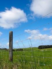 brabwire fence