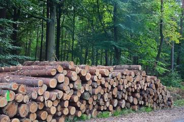 Komu kubik drewna?