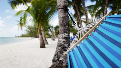 close up of hammock swinging on tropical beach