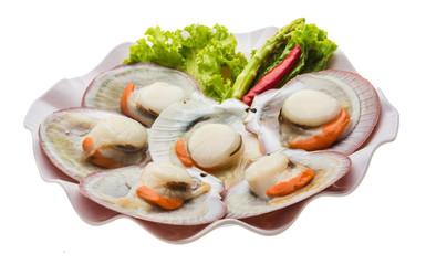 Raw fresh scallop