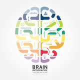 Fototapety infographics vector brain design diagram line style template