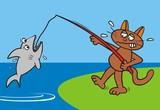 Tomcat - fisher poster