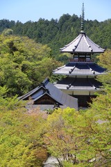 Yoshino, Japan - Kimpunsen-ji Temple