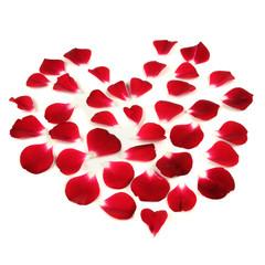Heart Shape Made of Red Rose Petals