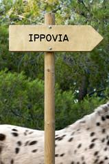 ippovia
