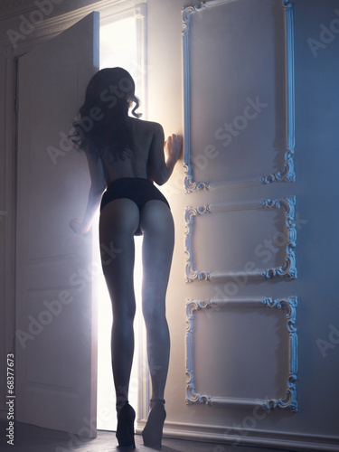 Poster Akt Sensual lady in classical interior