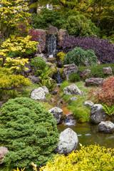 Giardino giapponese a San Francisco
