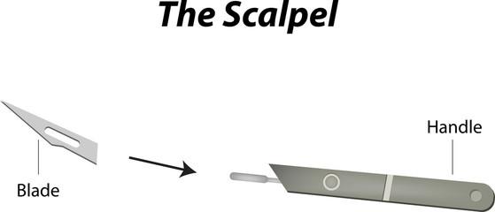 The Scalpel