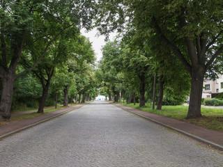 Elballee Dessau