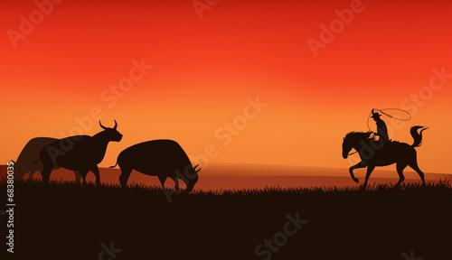 Foto op Canvas Rood wild west prairie landscape - cowboy chasing the herd of bulls