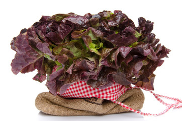 Oak leaf lettuce on a burlap bag