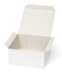 Opened cardboard box isolated on white