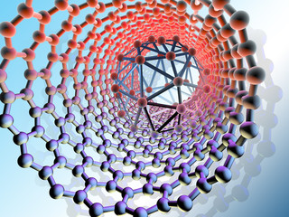 carbon nanostructures in the environment