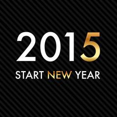 Silvester 2015 - Start New Year