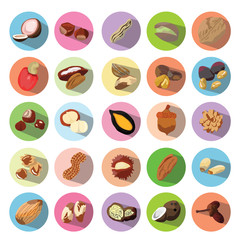 Vector Icons of Beans, Nuts, Seeds. Illustration eps10
