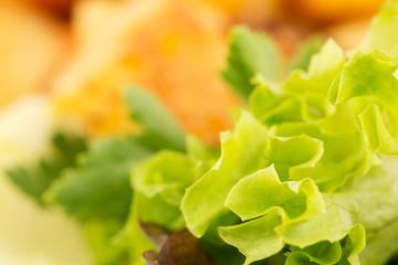 frischer Salat im Detail